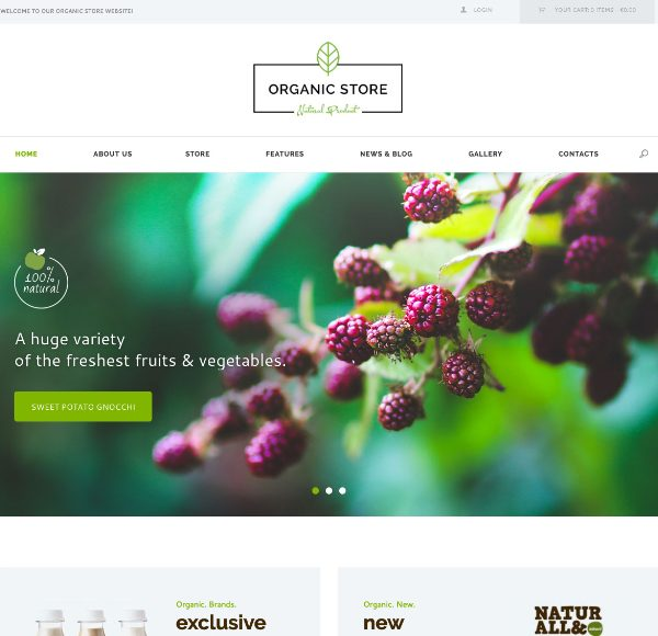 Шаблон Organic Store для интернет-магазина на WordPress